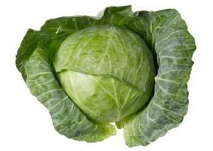 Cabbage Picture