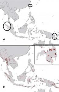 history of ebola virus