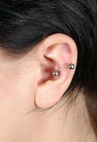 pictures of Snug Piercing